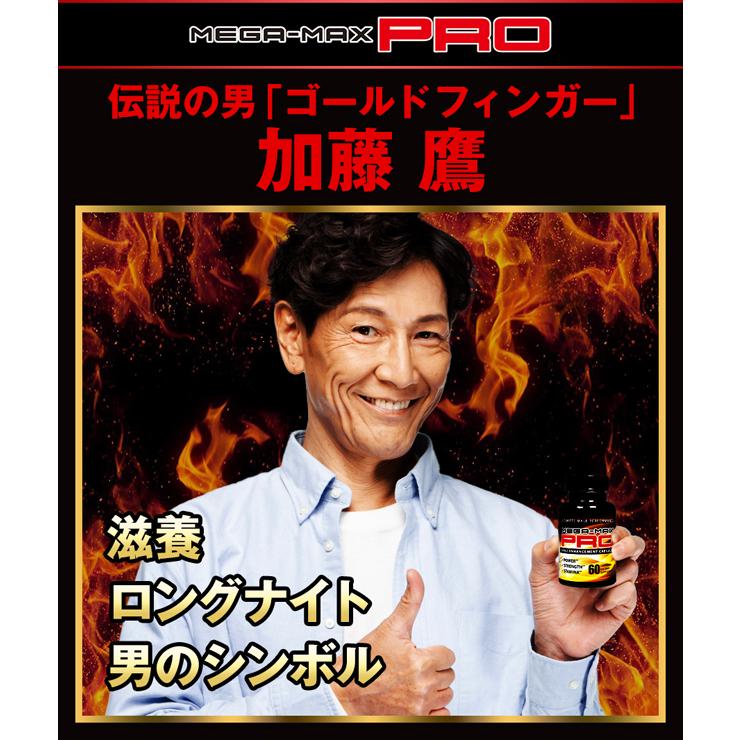 メガマックスプロ(MegaMaxPro)